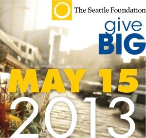 TSFGiveBIG2013_background